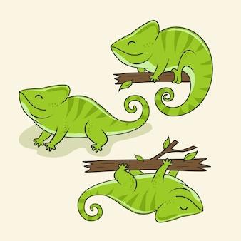 Chamäleon-cartoon-niedliche tiere