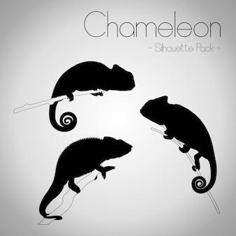 Chamäleon-schattenbild-satz