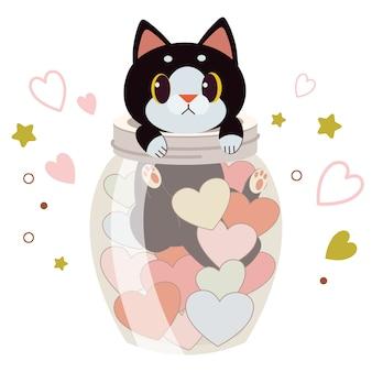 Charakter der süßen katze in einem glas mit dem herzen auf weiß