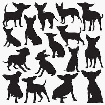 Chihuahua-silhouetten