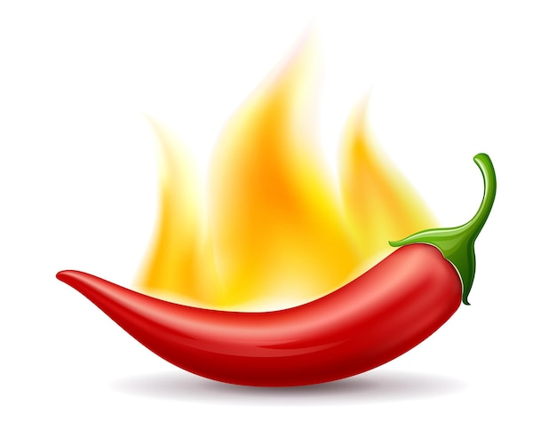 Chilischoten rotes feuer