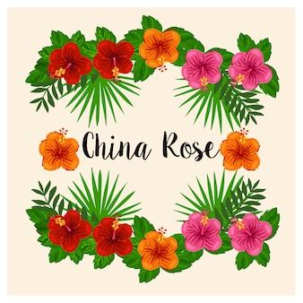China stieg, schuhblume auf vielzahl der tropischen blätter