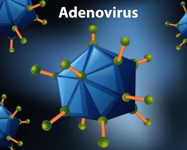 Close up diagramm für adenovirus