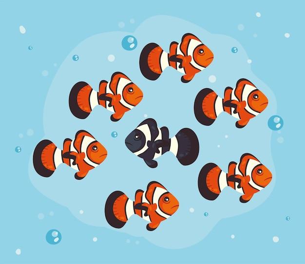 Clown fischt tiere im wasser