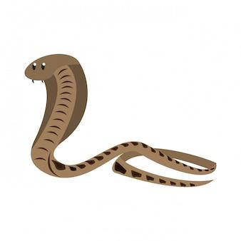 Cobra afrikanische schlange