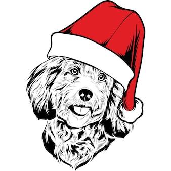 Cockapoo-hund in weihnachtsmütze zu weihnachten