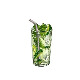 Cocktail-mojito mit limettenscheibe, rum, minzblättern und eiswürfeln. vintage vektor schraffur farbe hand gezeichnete illustration isoliert auf weißem hintergrund