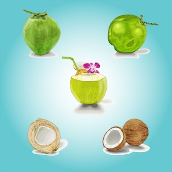 Coconut cocktail clipart set