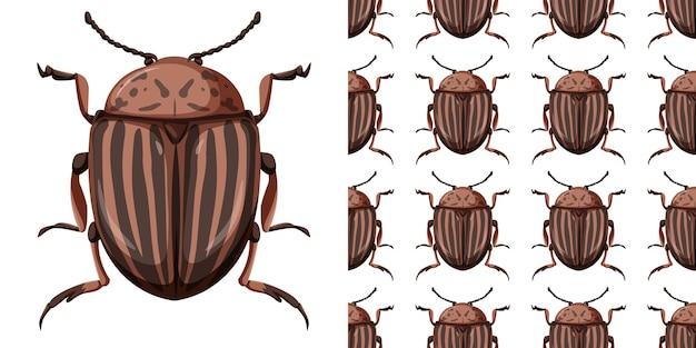 Colorado käfer insekt und nahtloses muster