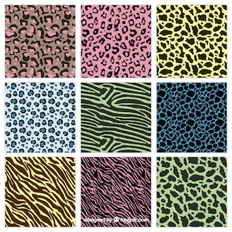 Colorful animal-prints muster