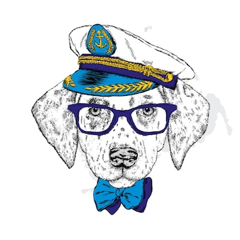 Cooler hipster-hund in stilvoller kleidung.