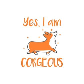 Corgeous, ein wunderschöner corgi