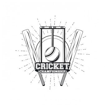 Cricket-ausrüstungsspieler