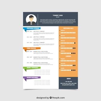 Curriculum-vorlage mit grafiken und farbigen teilern