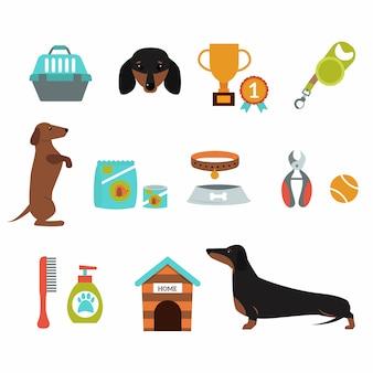 Dachshundhund, der infographic vektordarstellungs-symbolsatz spielt.