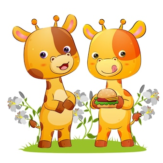 Das giraffenpaar hält einen großen burger mit dem zusätzlichen käse in der parkillustration
