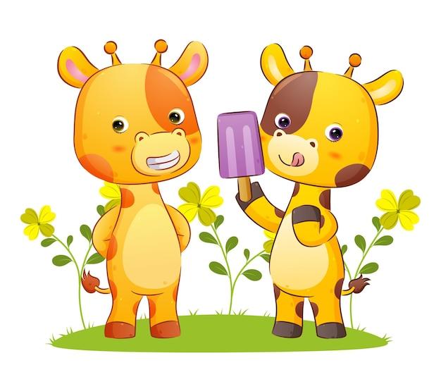 Das glückliche giraffenpaar isst zusammen das eis