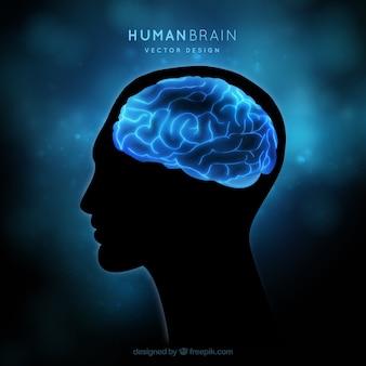 Das menschliche gehirn auf einem blauen hintergrund