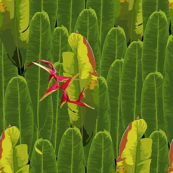 Das nahtlose muster, das mit rotem heliconia tropisch ist, blüht hintergrund