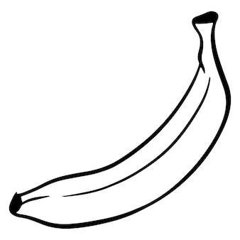 Das obst. banane. eine gesunde frucht. vitamine in lebensmitteln. linienstil. illustrationen für design und dekoration.