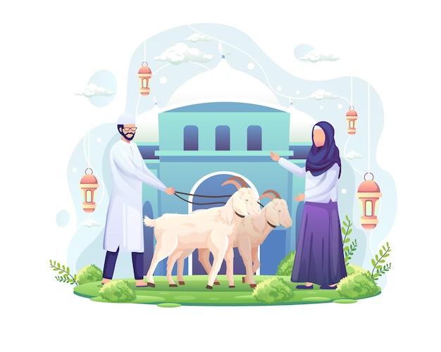 Das paar feiert eid al adha, indem es zwei ziegen für geopferte oder qurban-illustration spendet