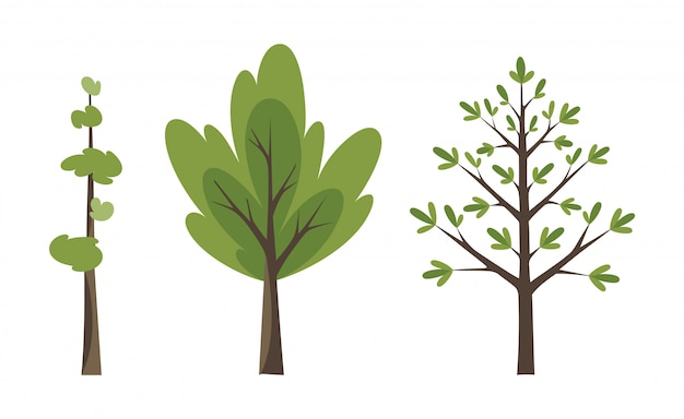 Dekorative bäume icon set
