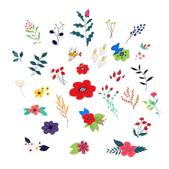Dekorative florale elemente