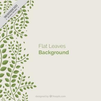 Dekorative hintergrund mit grünen blättern