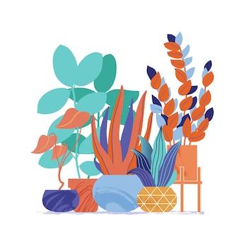 Dekorative reihe von zimmerpflanzen
