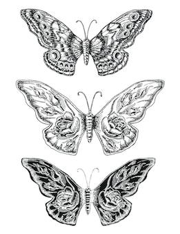 Dekorative skizze schmetterlinge