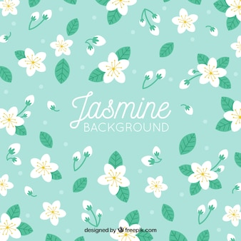 Dekorativer hintergrund mit jasmin