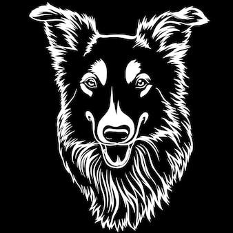 Der australische schäfer sheltie-hunderassegesichtskopf lokalisierte reinrassiges pedigree-jagdhundporträt des haustierhaustier-eckzahnwelpen, das tatzen späht, lächeln glückliches kunstgrafik-illustrationsdesign