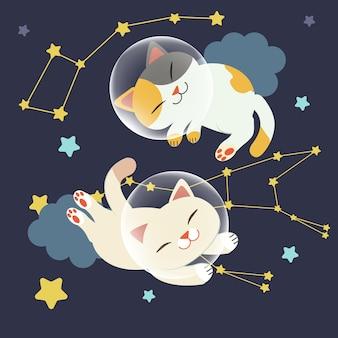 Der charakter der niedlichen katze schweben im raum. die katze schwimmt im weltraum mit einer gruppe von sternen
