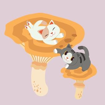 Der charakter der niedlichen katze sieht mit großem pilz glücklich aus.