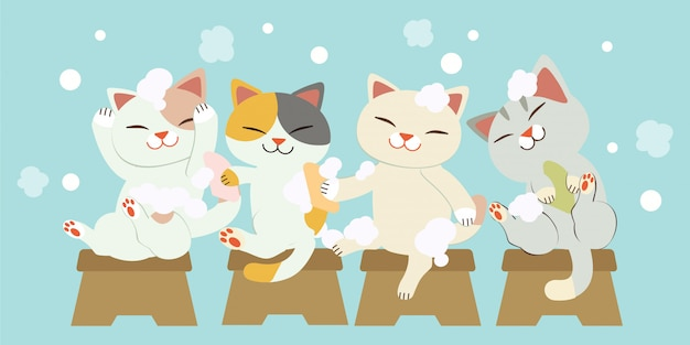 Der charakter von niedlichen katzen, die zusammen haare waschen. die katzen lächeln und es sieht so lustig aus. die katzen waschen haare mit viel luftblasen.