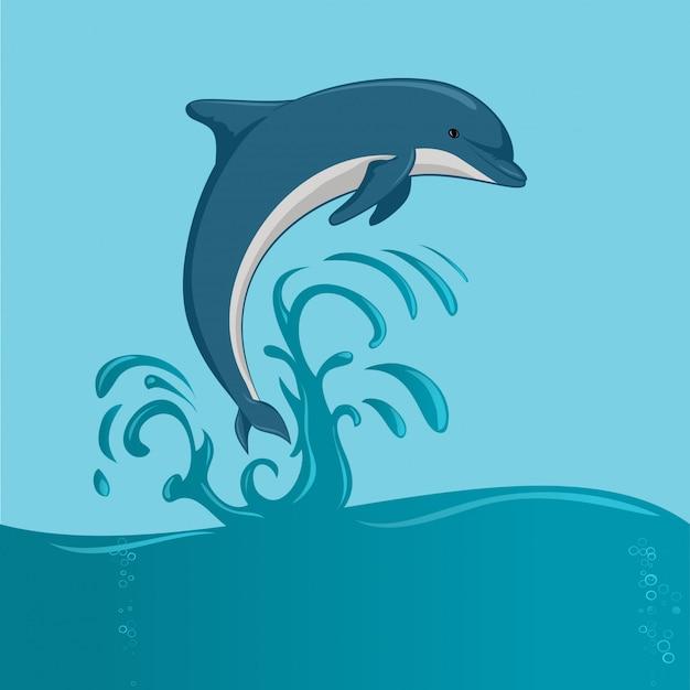 Der delphin springt