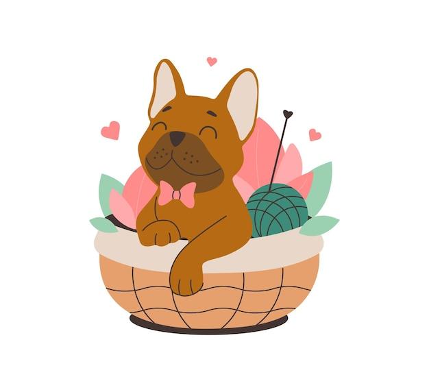 Der hund in einem weidenkorb der verliebte cartoon-bulldog ist gut für frühlingsdesign-stricknähte