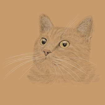 Der kopf einer katze mit einem schnurrbart. bleistifthandzeichnungsskizze lokalisiert auf einem weißen hintergrund.