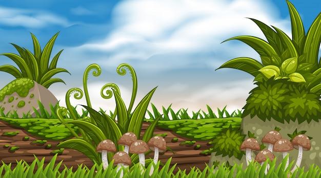 Der landschaft mit pilzen auf dem baumstamm