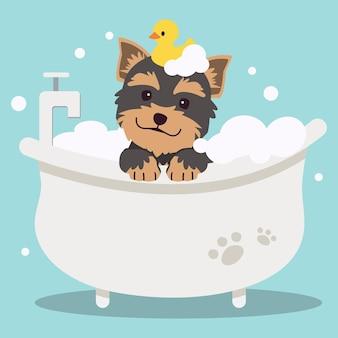 Der niedliche yorkshire-terrier-hund des charakters, der ein bad mit badewanne für das gesundheitswesen nimmt
