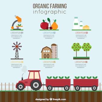 Der ökologische landbau infographie