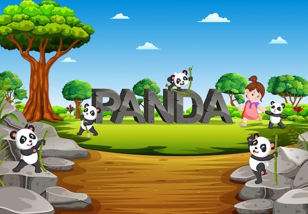 Der panda spielt auf dem panda-alphabet im garten