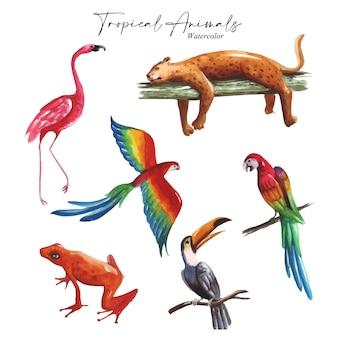 Der satz von aquarell-kunstwerk-inspiration, die über tropische tiere thematisiert wird