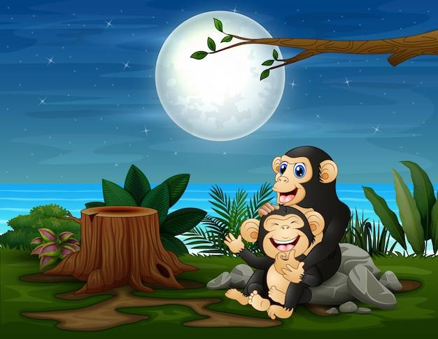 Der schimpanse, der spaß bei nachtlandschaft hat