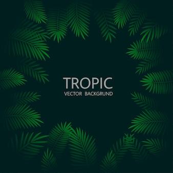 Design mit exotischen tropischen palmblättern und schriftzügen.