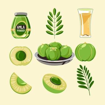 Detailliertes set mit amla-fruchtelementen Kostenlosen Vektoren