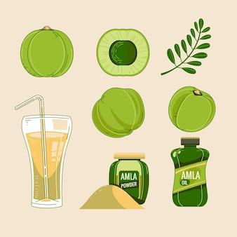 Detailliertes set mit amla-fruchtelementen