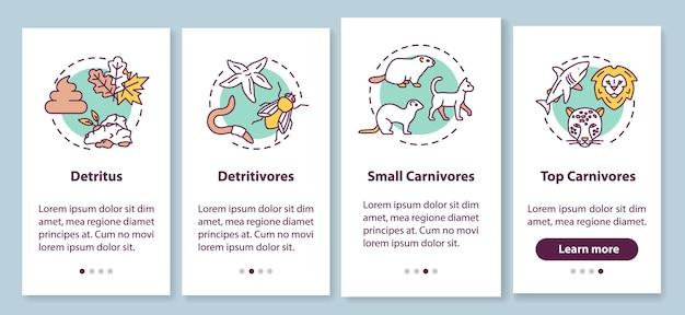 Detritus food chain onboarding mobiler app-seitenbildschirm mit konzepten. biologischer prozess, naturlebenszyklus walkthrough 4 schritte grafische anweisungen. ui-vektorvorlage mit rgb-farbabbildungen