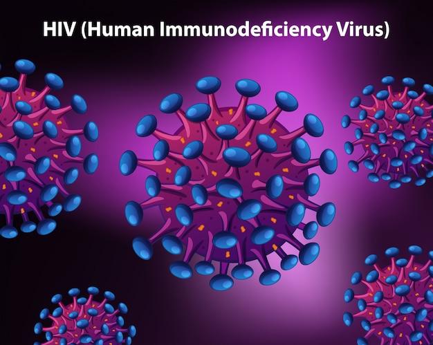 Diagrame zeigt das menschliche immunschwächevirus