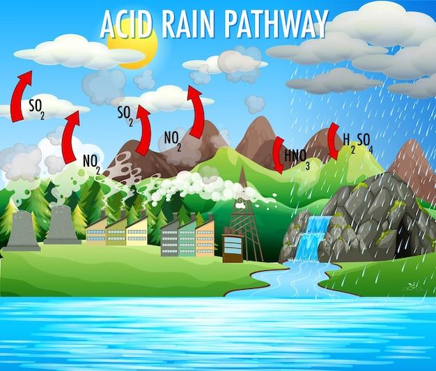 Diagramm, das den sauren regenweg zeigt Kostenlosen Vektoren